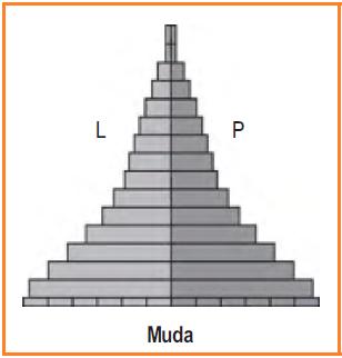 Piramida penduduk muda (ekspansif)