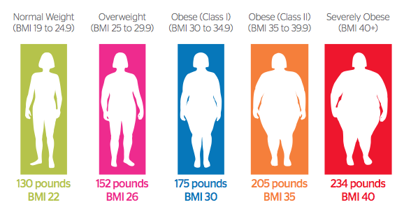10 facts on obesity