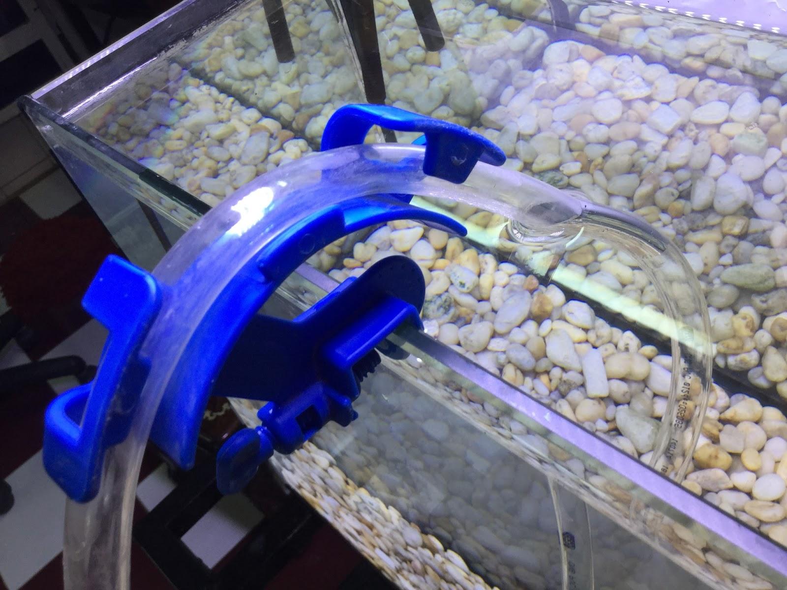 Kẹp vòi thay nước thủy sinh - hỗ trợ bạn thay nước nhanh hơn