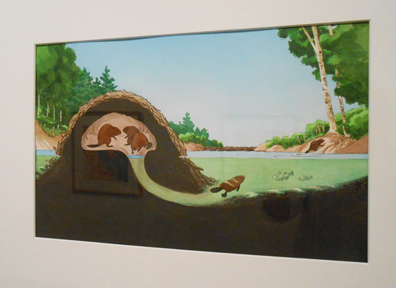 Beaver lodge diagram - photo#34