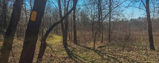 ice age trail brooklyn wildlife segment