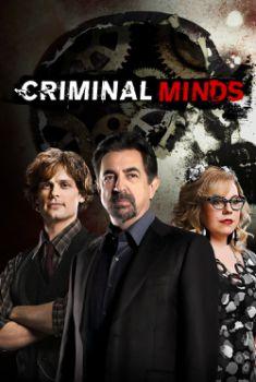 Criminal Minds 14ª Temporada Torrent – WEB-DL 720p Dual Áudio