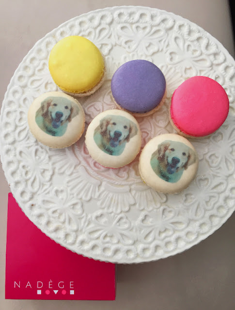 national dog day Nadege patisserie macaron golden retriever