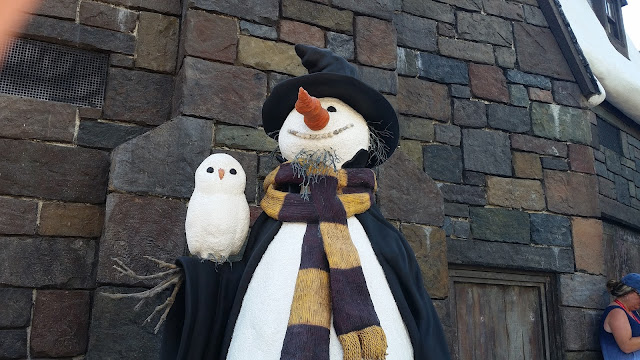 hey it's a snowman and snow owl
