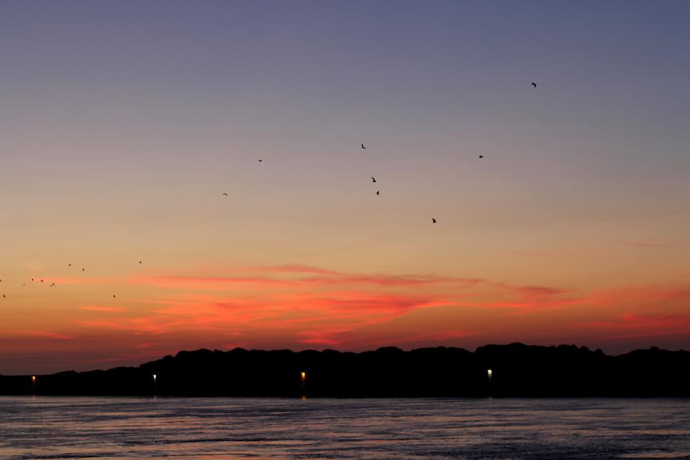 sunset praia da barra aveiro