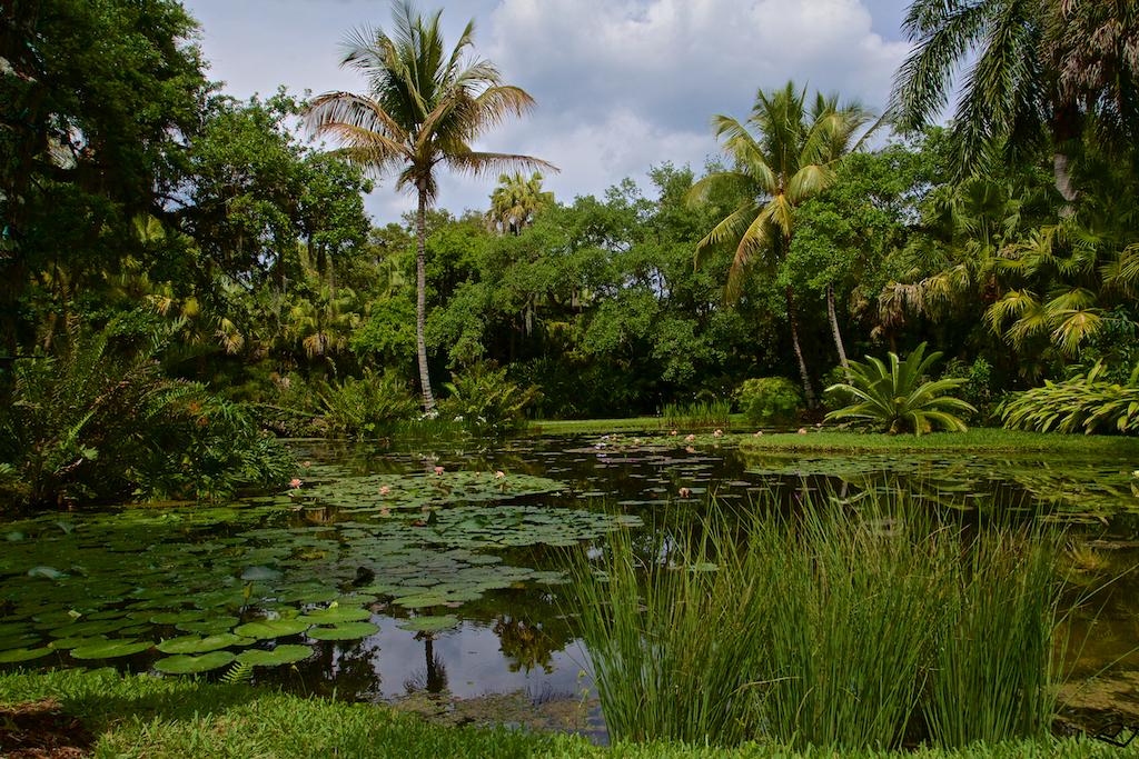 Derek brad photography mckee botanical garden nature - Mckee botanical gardens vero beach ...