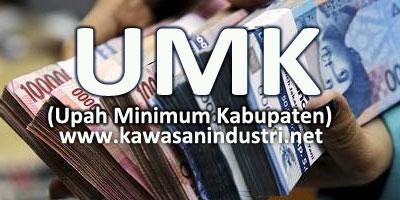 Download Gratis UMK Bekasi Jawa Barat 2019 PDF