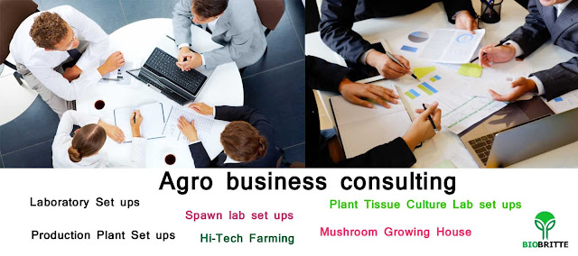 BIOBRITTE AGRO SOLUTIONS (INDIA) PRIVATE LIMITED