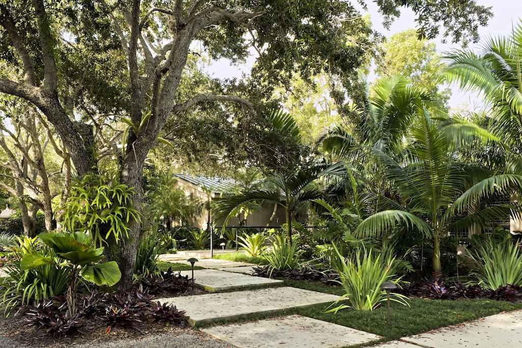 Tropical Garden and Landscape Design | modern design by ...