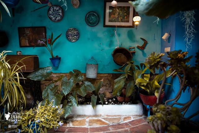 pared azul, macetas y otros objetos colgando