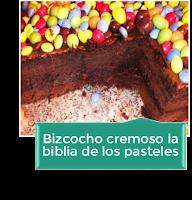 BIZCOCHO CREMOSO LA BIBLIA DE LOS PASTELES