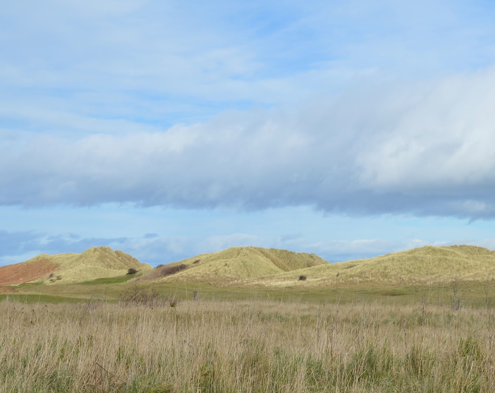 Warkworth Beach Sand Dunes