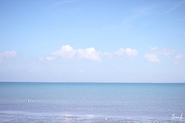 paysage île de ré