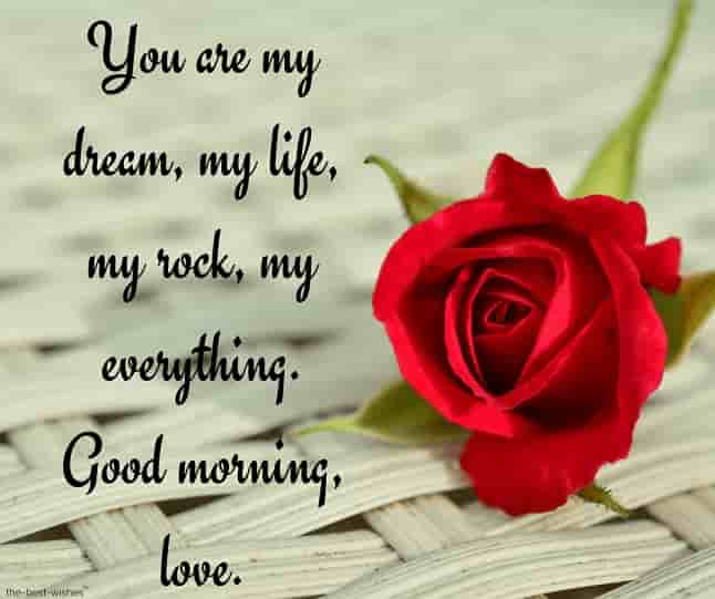good morning love messages to my lovely wife with red rose