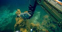 Απίστευτη ανακάλυψη❗ Χρυσάφι εκλύει το υποθαλάσσιο ηφαίστειο της Σαντορίνης❗