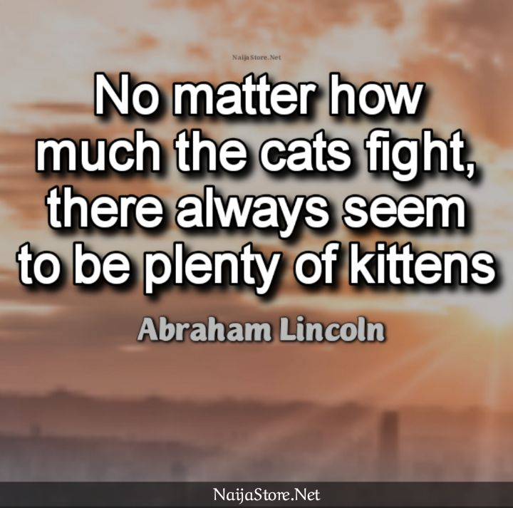 Abraham Lincoln's Quote: No matter how much the cats fight, there always seem to be plenty of kittens - Proverbs