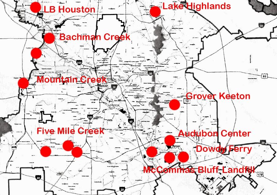 Dallas Trinity Trails Running Wild With Urban Feral Hogs In Dallas