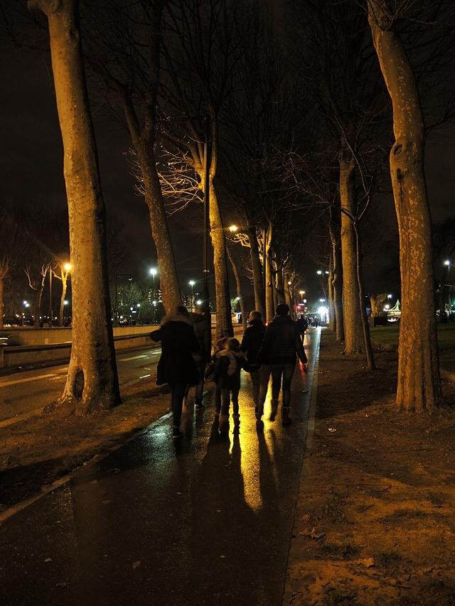 Parijse bomen