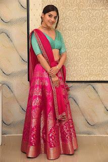 Actress Mehrene Kaur Pirzada Pics At Aswathama Pre Release