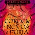 | RESENHA #179 | CORTE DE NÉVOA E FÚRIA, SARAH J. MAAS (CORTE DE ESPINHOS E ROSAS #2)