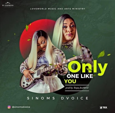 Sinoms Dvoice – Only One Like You