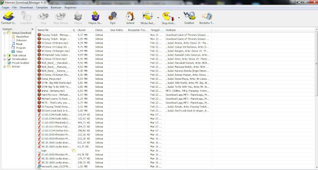 Download Internet Download Manager 6.30 Build 7 Terbaru Full Version