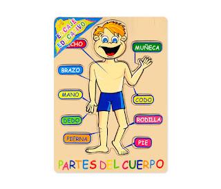 http://www3.gobiernodecanarias.org/medusa/contenidosdigitales/programasflash/Infantil/Cuerpo/Cuerpo/cuerpo2.swf