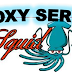Konfigurasi Proxy Server Dengan Squid3 Pada Debian 8.6 Server