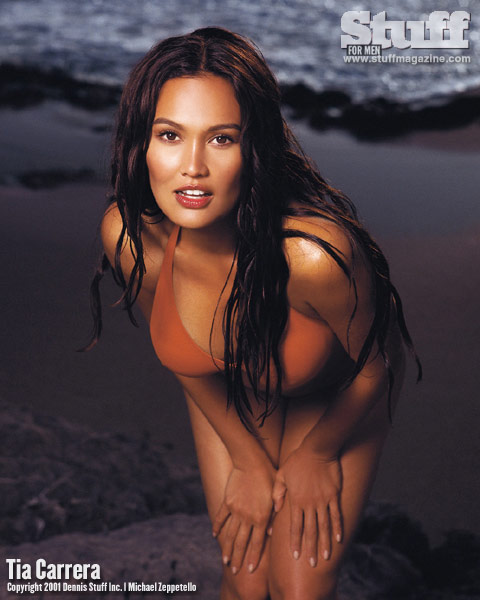 tia-carrere-seductive-april-hunter-nude-tubes