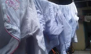 Tips Sederhana Menghilangkan Bau Karat Dan Keruh Air Sumur, Hasilnya Mengagumkan.