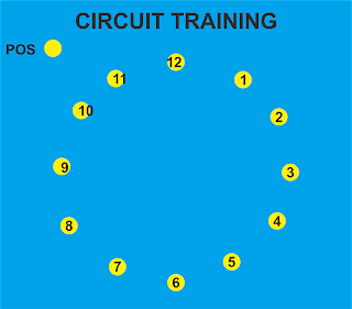 Program Latihan Menggunakan Circuit Training