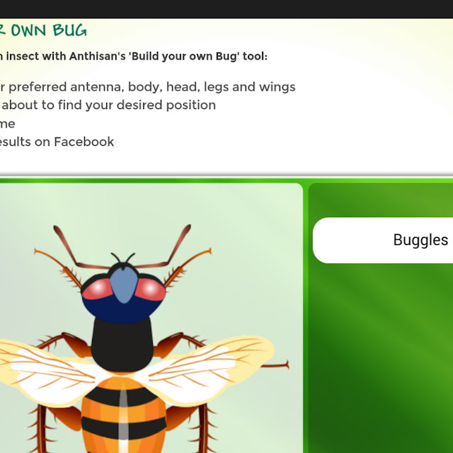 Bug hunt, build your own bug