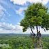 Ke Bangka Selatan, Jangan Lupa Kunjugi Wisata Rumah Pohon di Bukit Ini