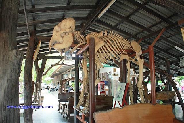 Kanchanaburi, Thailand | A Visit To Taweechai Elephant Camp