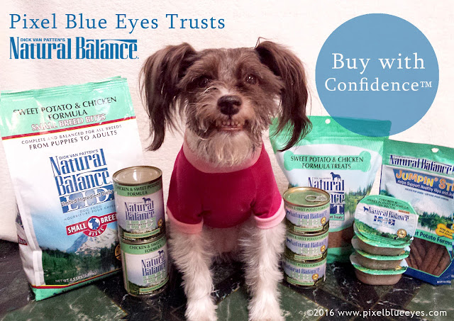 Pixel Blue Eyes trusts Natural Balance dog food and their Buy with Confidence Guarantee