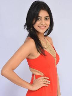 Priyanka Bhardwaj Stills At Mister 420 Movie logo launch 04.jpg