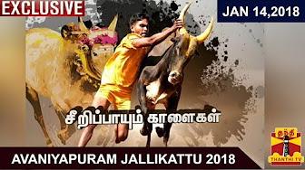 Avaniyapuram Jallikattu 2018 | Exclusive Coverage | Thanthi Tv
