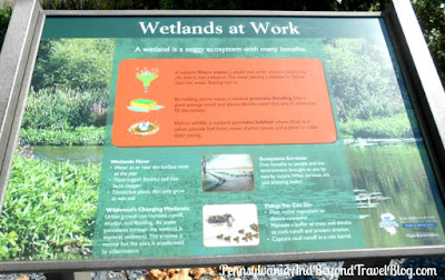 The Wetlands at Wildwood Park in Harrisburg Pennsylvania