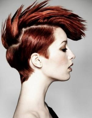 Superb Undercut Hairstyles For Female 10 Awesome Looks For Girls In 2017 Short Hairstyles Gunalazisus