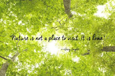 Most beatutiful Nature Quote
