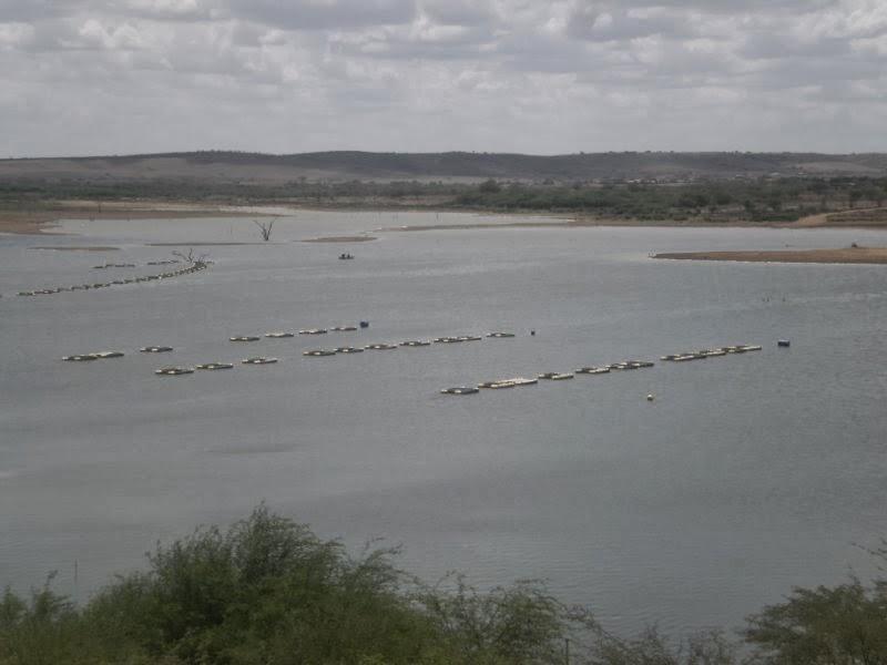 Resultado de imagem para fotos da enchente do açude de adustina