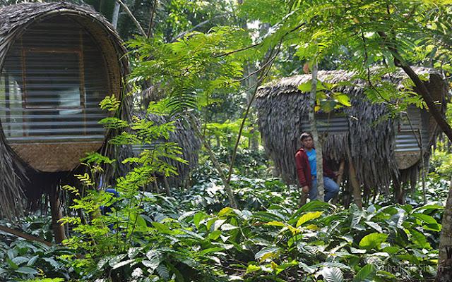 Rumah Kapsul/ Rumah Kepompong di Omah Kelingan Temanggung