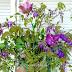 Virághagymák a kertben