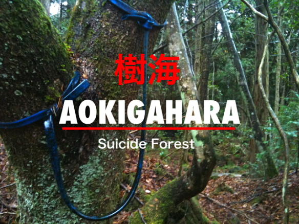 Suicide Fores