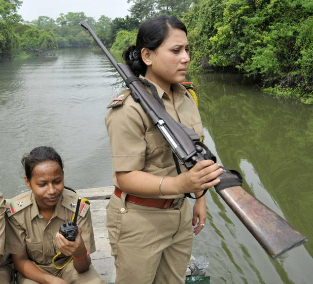 Stellas Musings Saluting Forest Rangers  Those Unsung