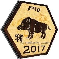 Pig 2017 - Netterku.com