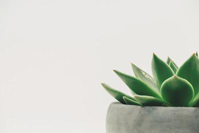 Estudio minimalista qu es el minimalismo y como for Significado de la palabra minimalista