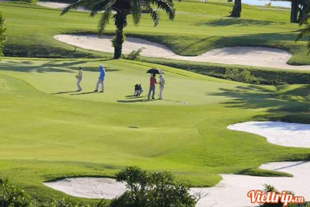 Sân Golf  - Sam Tuyền Lâm resort Đà Lạt