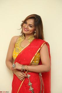Actress Ashwini in Golden choli Red saree Spicy Pics ~  062.JPG