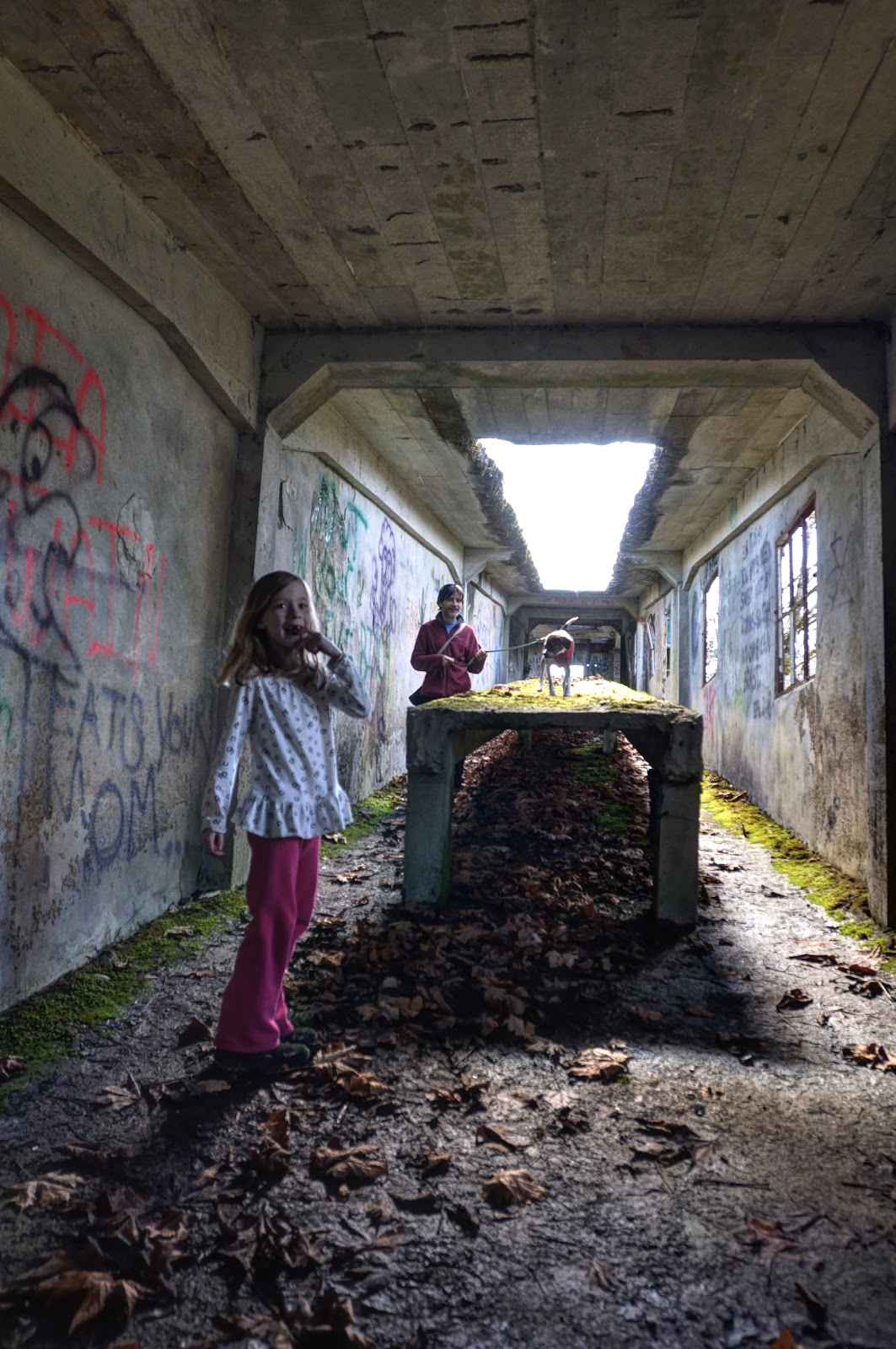 This Life In Ruins: The Tunnel At The Cement Factory In